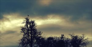 Trees with Guest by Aenea-Jones
