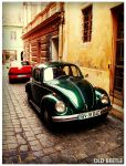 Old Beetle by norne-nornir