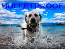 Bulletproof by RouxHP