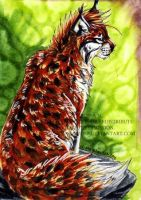 ACEO Kirsch by ZulayaWolf