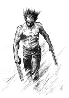 Wolvie - Sketch by Botonet