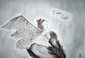 Black Swan-I was perfect FIN by supersmeg123