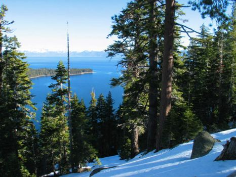Hill Overlooking Lake Tahoe by jedwardm