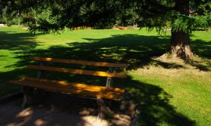 Reserved seat in the shade by abelamario