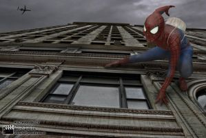 SpidermanOnBuilding1299TL700x467 by Brucer007