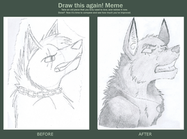 Draw this again meme! by Silversnow-wolf