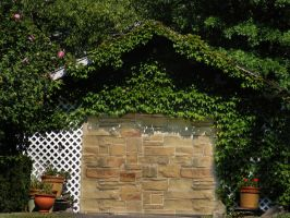Ivy and Stone Wall Stock by Mousenibbles