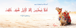 Surat Al-Ghashiya Aya 17 -  FB Cover by LMA-Design