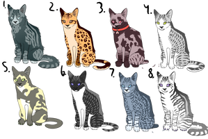 | OPEN | Cat Adoptables by C-Adopts