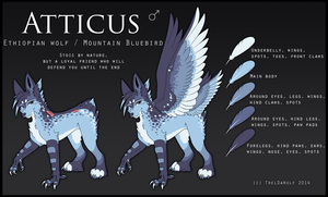 Atticus reference sheet by TrelDaWolf