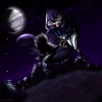 Fly with Raven by Chisako