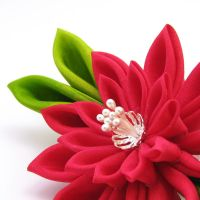 another red chrysanthemum by offgenemi