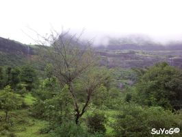 Bhandardara Scenery 2 by sds49in
