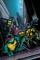 tmnt colors 09 by natelovett
