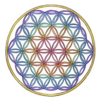 Rainbow Chakra Flower of Life by Spiralpathdesigns