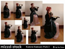 Eastern Emissary Pack 2 by mizzd-stock