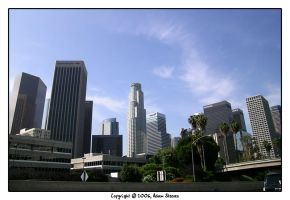Downtown Los Angeles by fervalosious