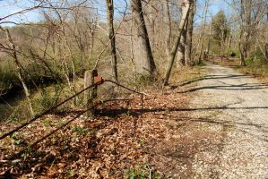 Abandoned Road and Cable Guardrail by timid-wolf