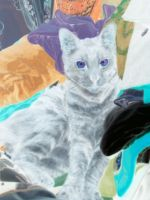 painting of the white cat by Cartooncamillion