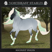 7105 ES Mionnt Inion by NorthEast-Stables
