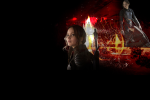 Mockingjay Textless Wallpaper by mewpearl