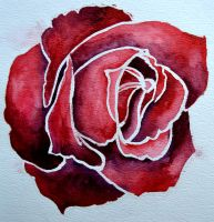 Watercolor rose (good one) by Go17