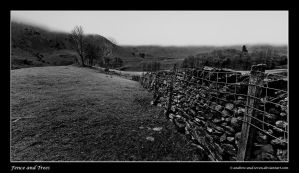 Borrowdale Valley by Andrew-and-Seven