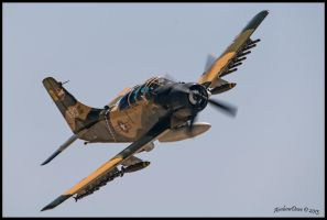 Planes of Fame 2013 Douglas A-1E Skyraider by AirshowDave