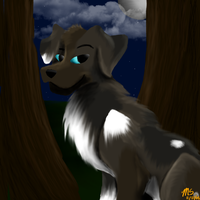 Speed Painting by MarchingStitch