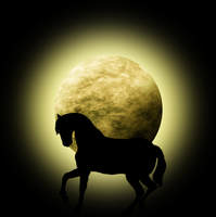 Moon with horse silhouette by Viktoria-Lyn
