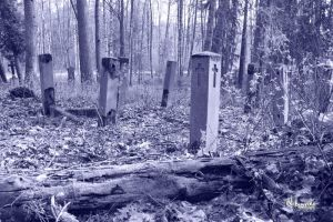 Old Cemetery by jelinjer