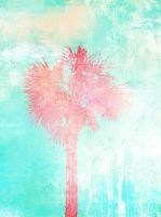 Palm tree 2 by MyCleanHands