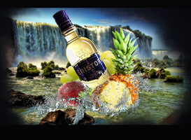 Eristoff Vodka advertisement by duelord