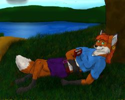 At the park. by Fox-Superior