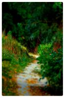 Small path on the banks of marl. by fifoux