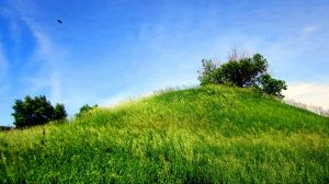 American Indian Burial Mound by mrmd53