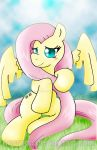 Poster: Pony Fluttershy by NecroCC