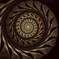Metallic Nautilus by Astrantia01