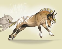 2395 Gamble by NorthEast-Stables