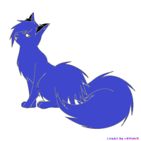 winter berry as a warrior cat by m1tyz1t