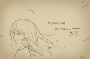 R.I.P. My Fluffy Ball by Keluy
