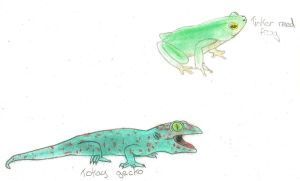 A lizard and a frog by LIZ94