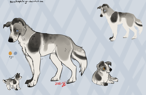 Dog adoptable  - Closed - by PointAdoptsforyou