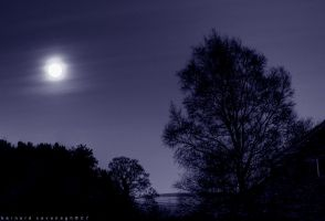 Blue Moon by horai