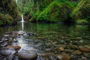 Punchbowl Falls Shoreline by adamsimsphotography