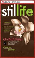 School Project: The Orchid by angelaacevedo