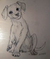 Physio The Rescued Pup by barish-ki-boond