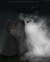 Graystripe and Silverstream by NonsensicalLogic