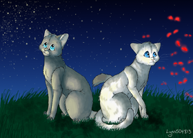 Dovepaw and Ivypaw -+Two Destinies+- by Lyss504813