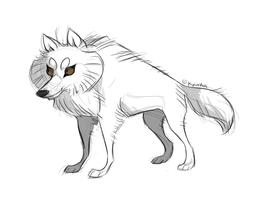 Arctic wolf by Kipine